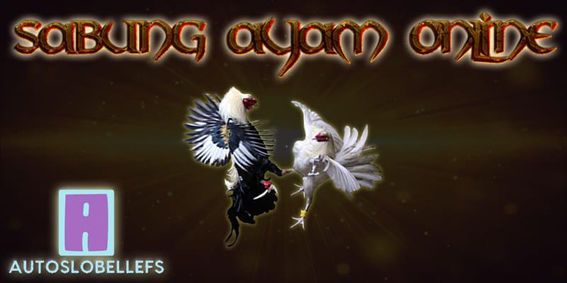 Situs Agen Judi Sabung Ayam Online Terbaik Berikan Bonus Terbesar